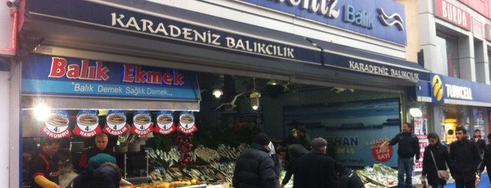 Karadeniz Balık Evi is one of Gittiğim Yerler2.