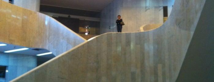 Museo de Arte Moderno is one of DF.
