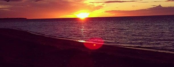 Пляж Финского Залива is one of Sashaさんのお気に入りスポット.