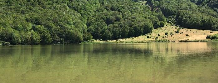 دریاچه ویستان ، گیلان   Vistane Lake , Gilan is one of Sarah 님이 좋아한 장소.