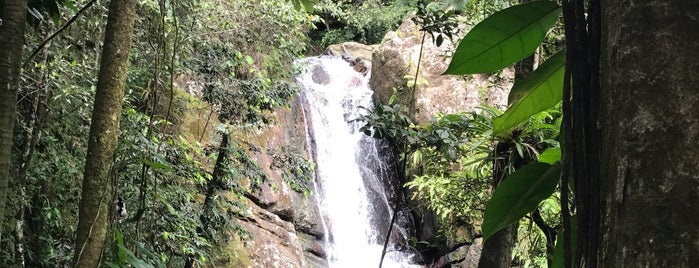 La Mina Trail And Waterfall is one of Puerto Rico.