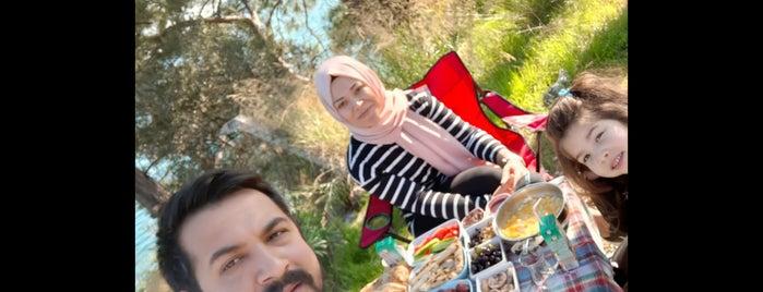 Çam Yuva Yolu is one of Lugares favoritos de Mahide.