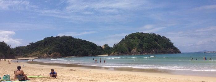 Matapouri Bay is one of Posti che sono piaciuti a Ben.