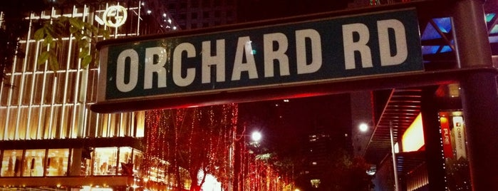 Orchard Road is one of Sing-a-pore.