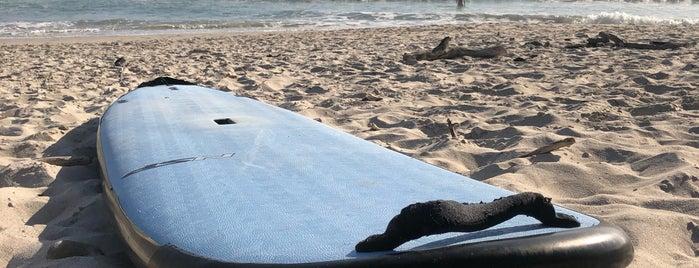 Playa La Lancha is one of John'un Beğendiği Mekanlar.