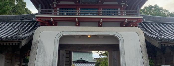 温泉山 瑠璃光院 安楽寺 (第6番札所) is one of Hotels in Japan.