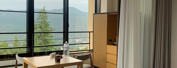 Hyatt Regency Hakone Resort and Spa is one of Hotels in Japan.