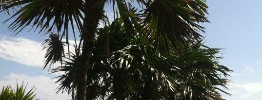 Playa Paraiso is one of Канкун что посмотреть?.