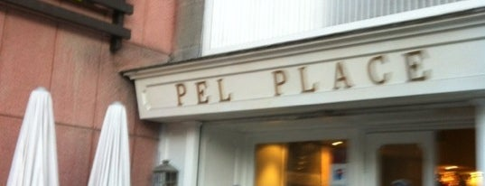 The Pel Place is one of Premium Zone www.thepremiumclub.es.