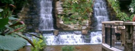 Gaylord Opryland Resort Cascades Waterfall is one of Tennessee must visits!.