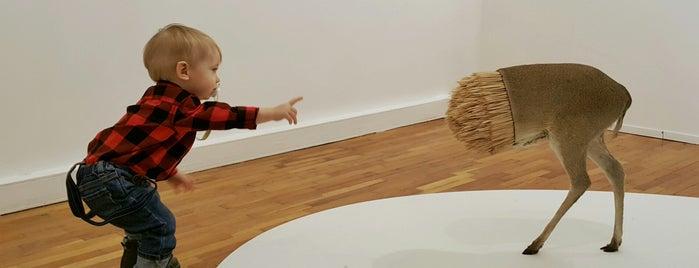 7th Moscow International Biennale of Contemporary Art is one of Vladimir 님이 저장한 장소.