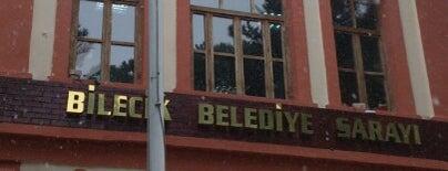 Bilecik Belediyesi is one of Ismailさんのお気に入りスポット.