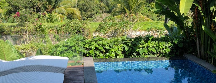 Ubud Green Resort Villas is one of Cheryl : понравившиеся места.
