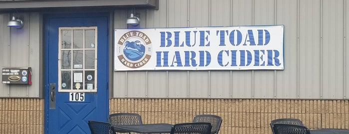 Blue Toad Hard Cider is one of Rochester.