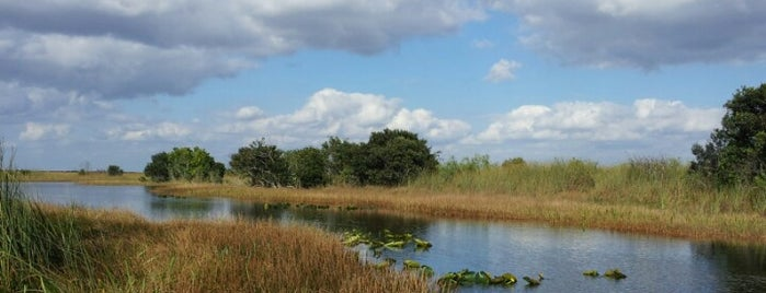 Everglades Airboat Tours is one of Must eat & do in Floria.
