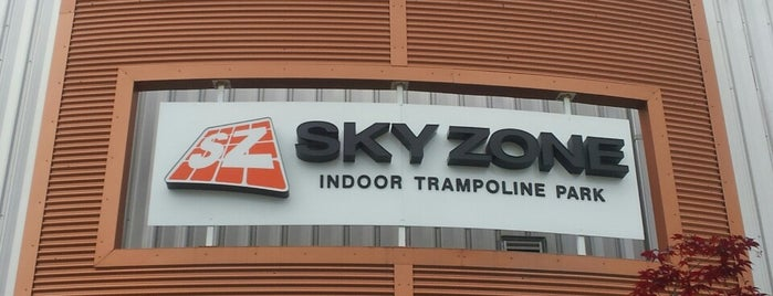 Sky Zone is one of PGH to do.
