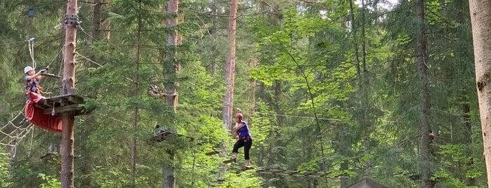 Abenteuerpark Achensee is one of Trips / Achensee.
