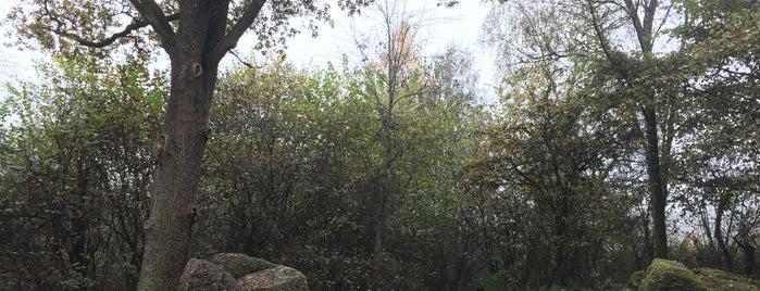Menhir de Deigné is one of Uitstap idee.