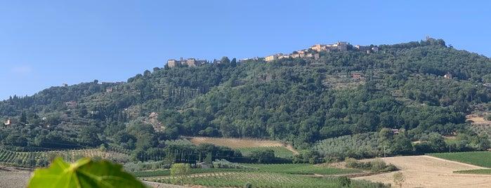 Montalcino is one of Antonio Carlos : понравившиеся места.
