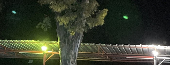 Manzara Cafe is one of Caner : понравившиеся места.