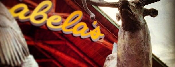 Cabela's is one of Locais salvos de Nathan.