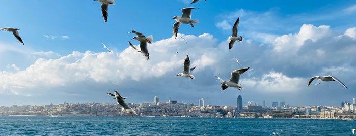 İkiyaka İstanbul Cafe is one of สถานที่ที่บันทึกไว้ของ Sibel.