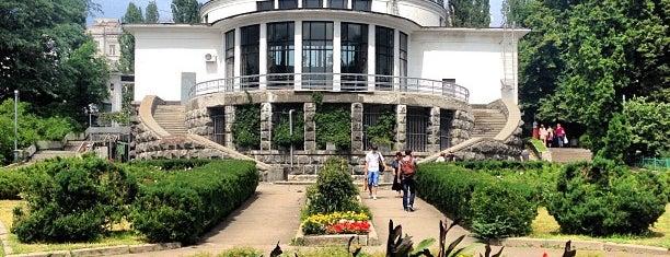 Ботанічний сад ім. О. Фоміна / O. Fomin Botanical Garden is one of Kyiv Parks.