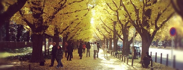 Jingu Gaien Ginkgo Avenue is one of JPN.