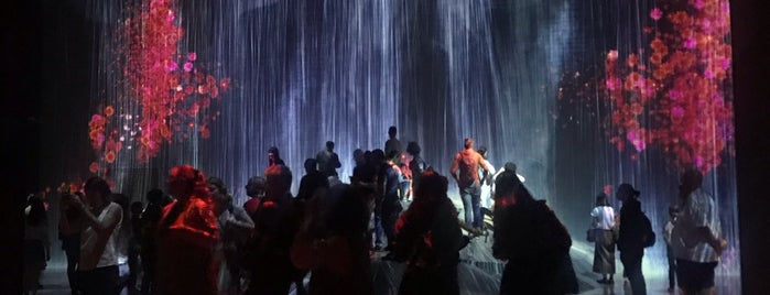 teamLab Borderless is one of Tokyo.