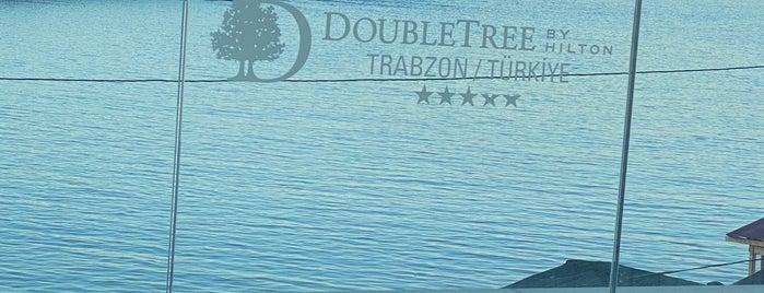 DoubleTree by Hilton is one of Orte, die Ahmet gefallen.