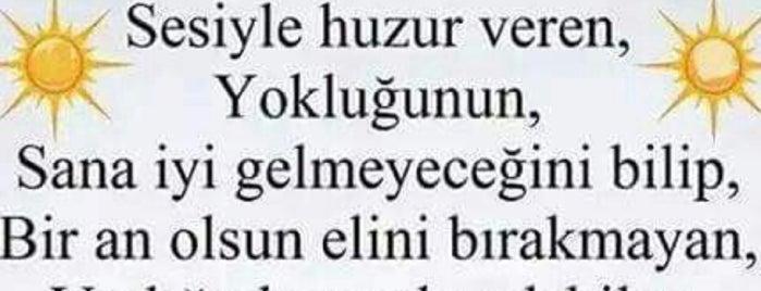 Sü'KuT^u DeRiN is one of Posti salvati di Yunus.