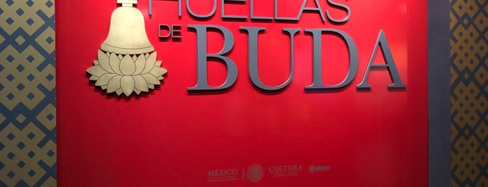 "Exposición Temporal ""Las Huellas De Buda"" is one of Mexico 🇲🇽."
