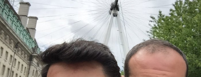 The London Eye is one of Posti che sono piaciuti a Ferhat.