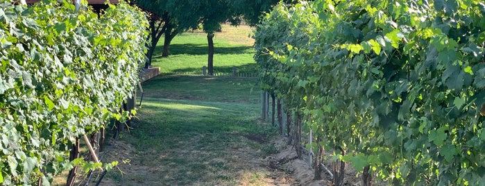 Tranche Cellars is one of Wine Trip: Washington (2nd US wine country).