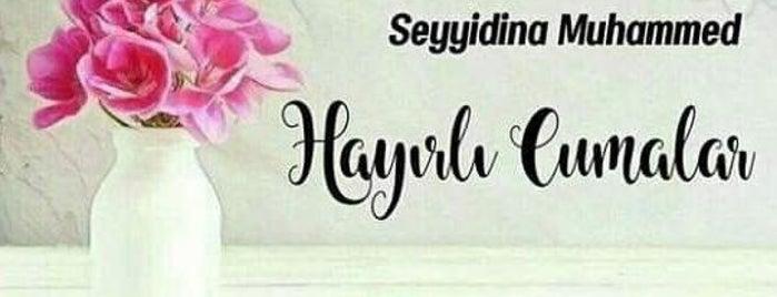 Sönmez Tekstil is one of DENİZLİ BÖLGESİ, TEKSTİL&KONFEKSİYON İMALATÇILARI.