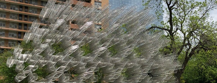 Forever Bicycles is one of Austin Memorial Day.