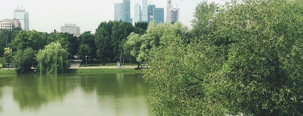 Novodevichy Park is one of JTop.