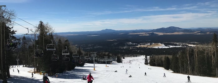 Arizona Snowbowl Snow Report is one of Lugares favoritos de Fernanda.