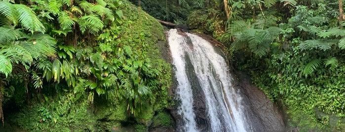 Cascade des Écrevisses is one of Martinique & Guadeloupe.
