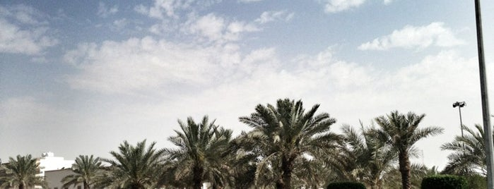 Al Rawdah Park is one of Walking +Running in riyadh.