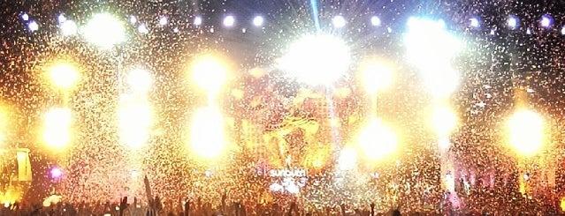 Sunburn Festival is one of Гоа.