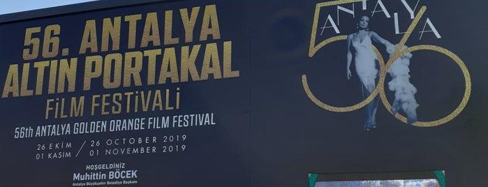 Antalya 54. Uluslararası Altın Portakal Film Festivali is one of Alp Gökçe'nin Beğendiği Mekanlar.