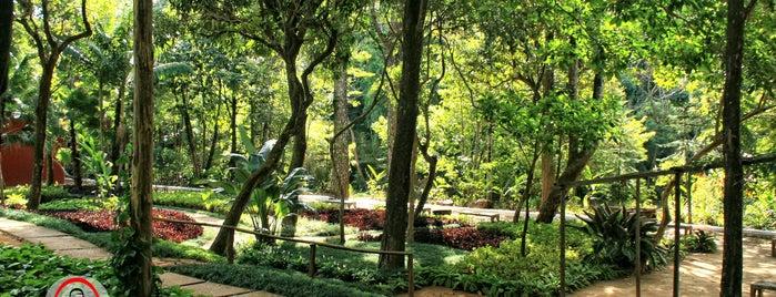 Museu de História Natural e Jardim Botânico da UFMG is one of Art galeries,theatre and cultural tourism in BH.