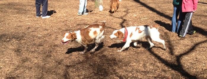 Sweat Mountain Dog Park is one of Kimberly'in Kaydettiği Mekanlar.