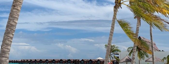 Grand Park Kodhipparu is one of International: Hotels.
