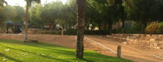 National Museum Park is one of Riyadh Outdoors.