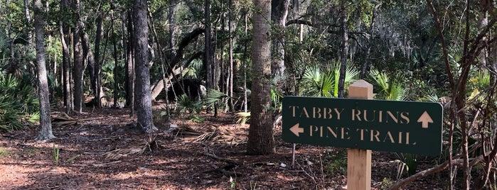 Pine Trail is one of Savannah, GA.