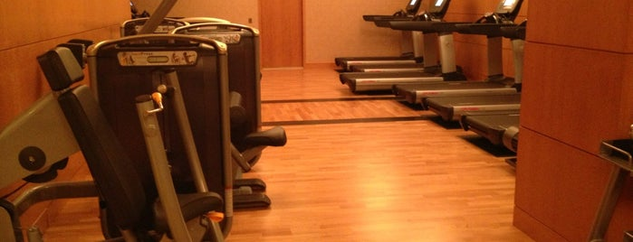 Fitness Center at the Grand America Hotel is one of Layover Hotel Gyms.