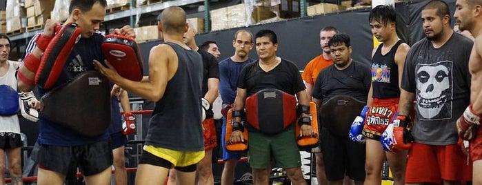 OC Muay Thai is one of Orte, die Alissa Samia gefallen.