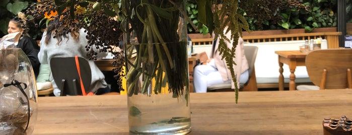 The House Cafe Garden is one of Orte, die Suheyla gefallen.